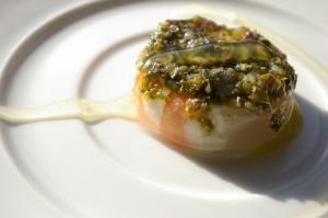 Inclusion de crevettes au citron vert